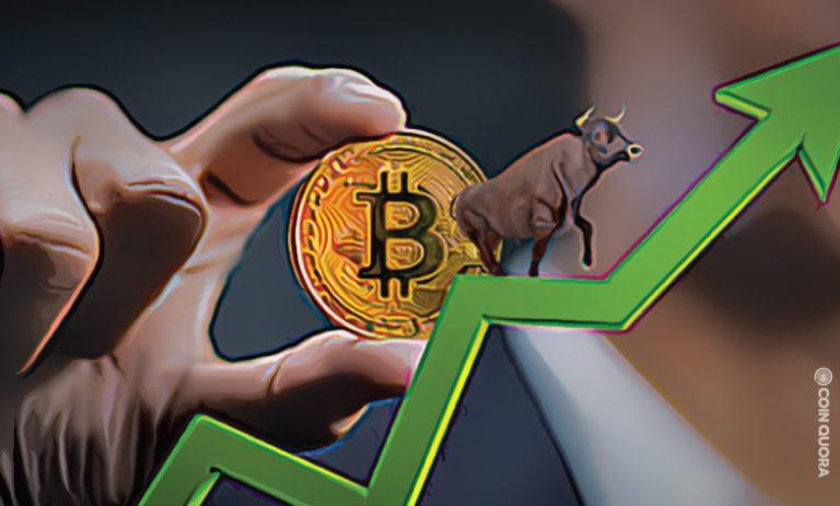 Bitcoin-Bull-Run